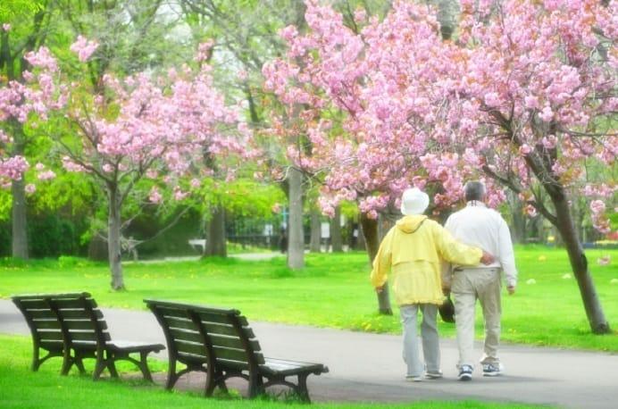 公園を散歩する夫婦